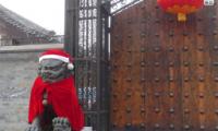 Focus Chine Noël_Une
